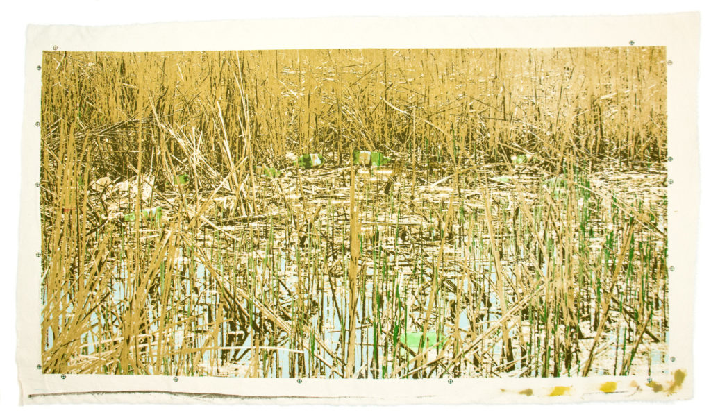 ca. 50 x 100 cm, screenprint on canvas, 2017